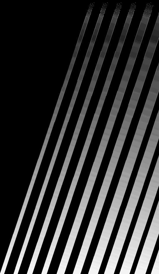 https://cdn.bayer04.de/shop-static/src/web/images/backgrounds/background-stripes.png
